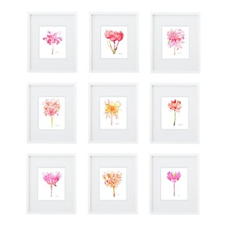Botanical Giclée Prints - Set of 9