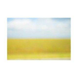 "Cheryl Maeder ""Everglades I"" Art Photograph"
