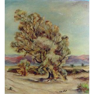 Antique Plein Air Desert Shade Oil Painting