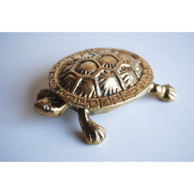 Image of Small Brass Turtle Box