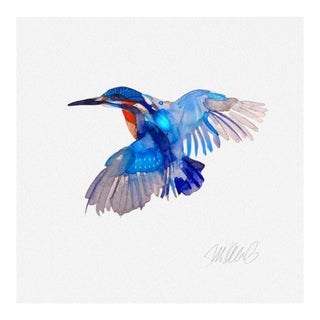 Premium Giclee Print Kingfisher