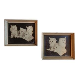 Framed Kitten Photographs - a Pair, Artist Bradley Currey