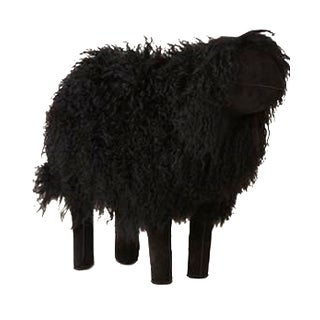 Medium Black Sheep