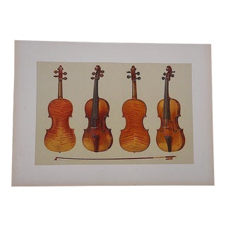 Antique Lithograph of Musical Instruments, Violins