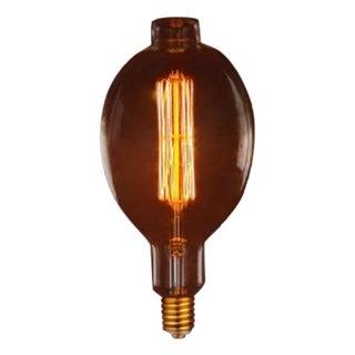 Oversize Oval Edison Bulb