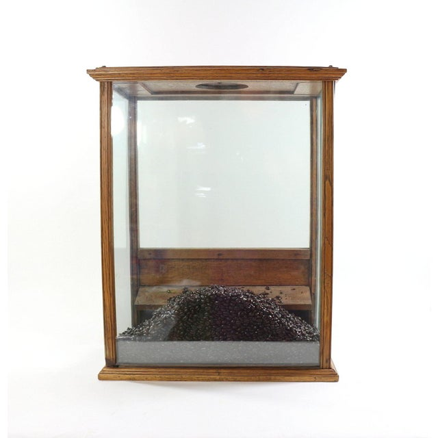 Image of 1890s General Store Counter Top Coffee Display