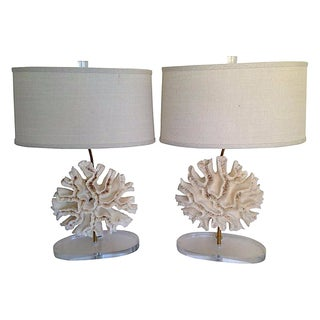 Natural Brain Coral Lamps - Pair