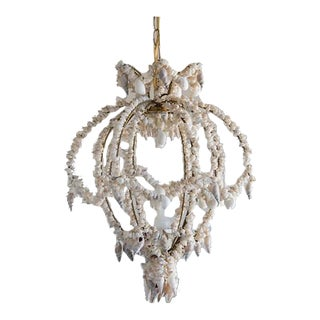 Vintage Hand Made Seashell Chandelier, Italy c.1960