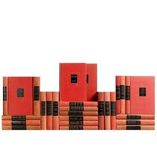 Modern Reader Minis, S/25