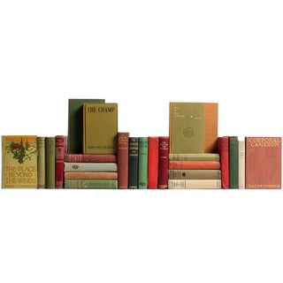 Vintage Earthtone Novels Collection - Set of 25