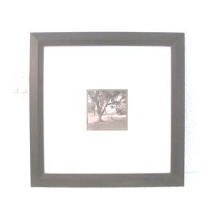 Arboretum Photograph