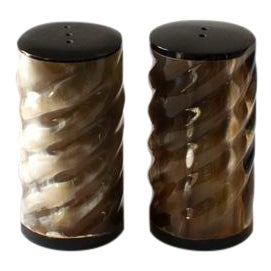 Faux Horn Twisted Salt and Pepper Set