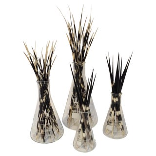 Porcupine Quill Glass Flask - Set of 4