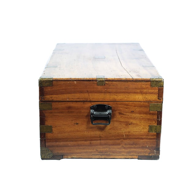 Early 19th Century Walnut and Brass Trunk - Image 9 of 10