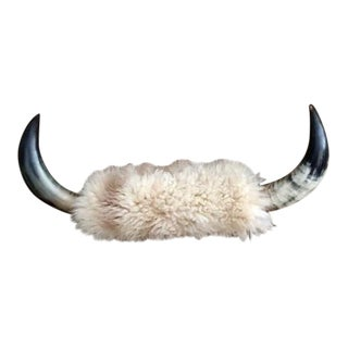 Vintage Long Horn & Sheep Skin Wall Mount