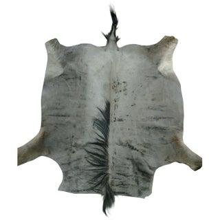 "African Blue Wildeebest Hide - 4'6""x7'5"""