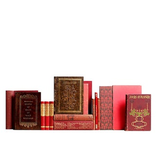 Distressed Marsala Poetry Books - Set of 15