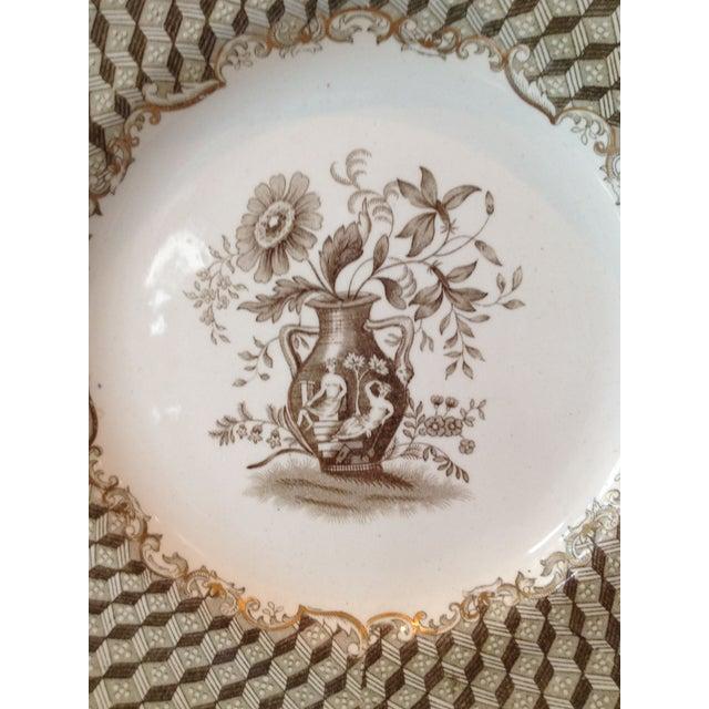 Brown Spode Portland Vase Pattern Luncheon Set - Image 4 of 10