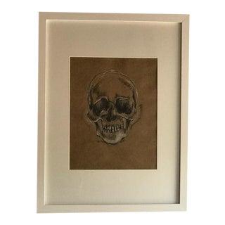 Original Conte Charcoal Drawing Skull