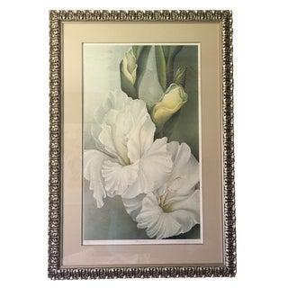 Silver Leaf Iris Flower Print