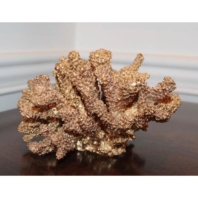 Designer Gilded Coral - Image 4 of 7