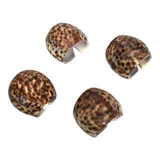 Tiger Cowrie Shell Napkin Rings - Set of 4