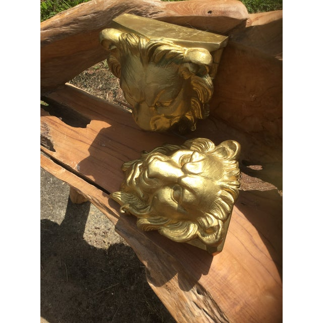 Image of Majestic Golden Lion Wall Shelfs - a Pair