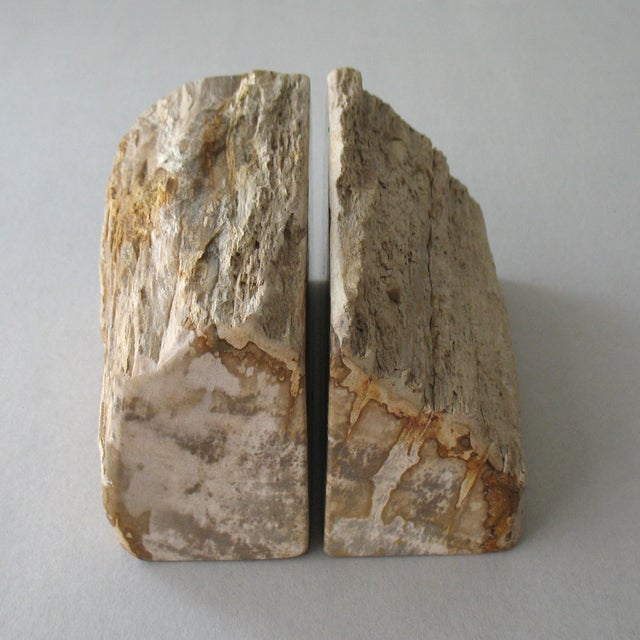 Petrified Wood Bookends - Pair - Image 3 of 9