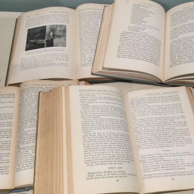 Vintage Green Book Stack - Set of 4 - Image 8 of 11