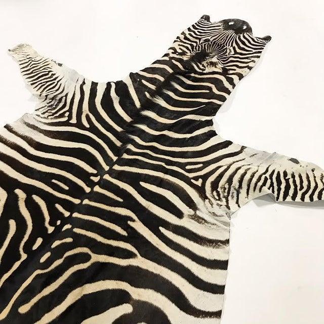 Natural Zebra Hide Rug - 8'3 x 7'3 - Image 3 of 3