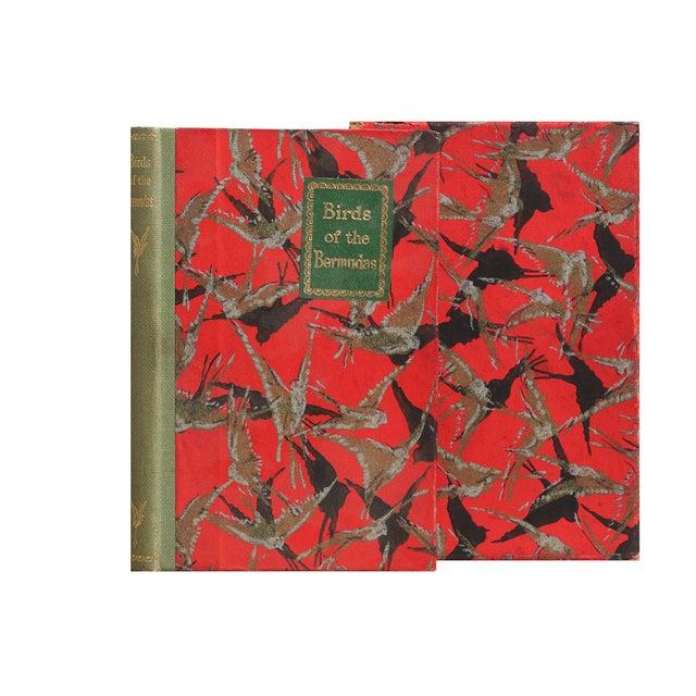 Birds of Bermudas Book - Image 2 of 3