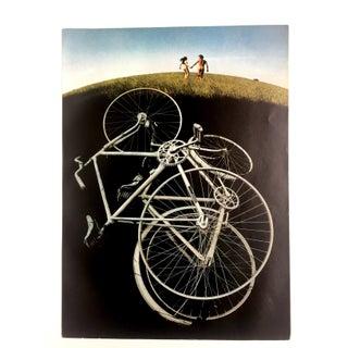 1970s Grassy Romp Print by Sam Haskins
