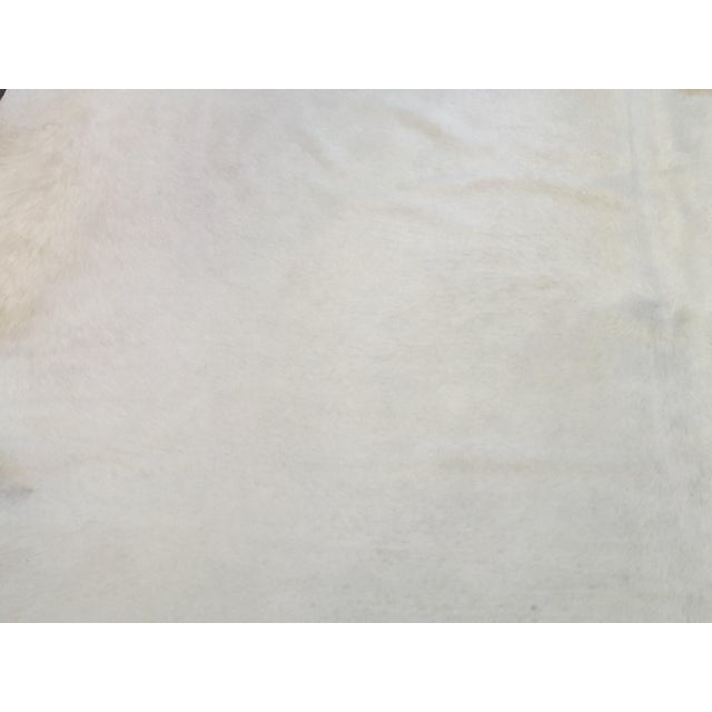 White Brazilian Cowhide Rug - 8″ × 8″ - Image 7 of 8