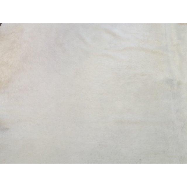 Image of White Brazilian Cowhide Rug - 8″ × 8″