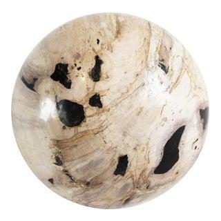 Polished Petrified Wood Sphere