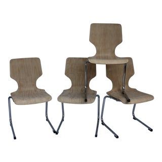 1960s West German Pagwood Chairs- Set of 4
