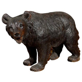 Swiss Turn of the Century Small Black Forest Carved Bear
