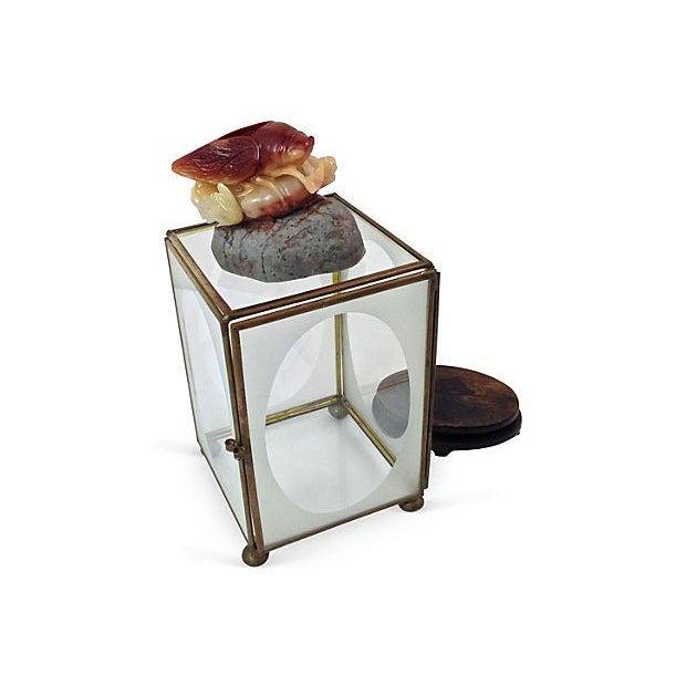Image of Shoushan Cicada Snuff Bottle & Curio - Set of 3