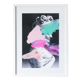 Chad Wys Painted Lady Framed Print