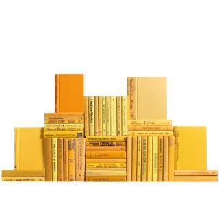 Modern Yellow Book Wall, S/50