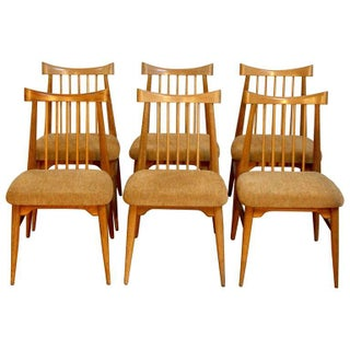 Mid-Century Brown Saltman Dining Chairs - Set of 6