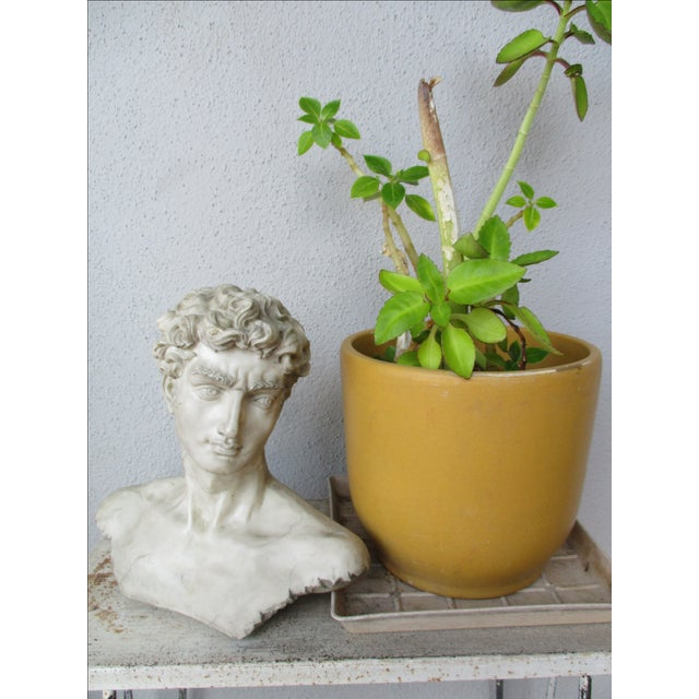 Neoclassical Vintage Cast Resin Bust - Image 3 of 11