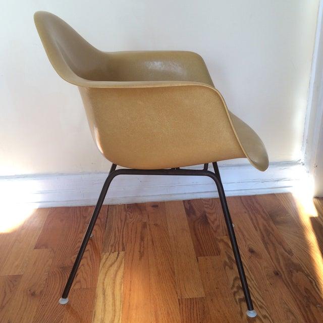 Vintage Herman Miller Eames Fiberglass Armchair - Image 4 of 8