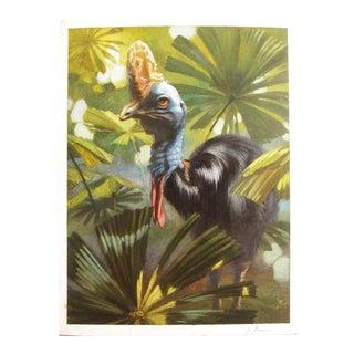 "Ute Simon ""Cassowary"" Jungle Bird Painting"