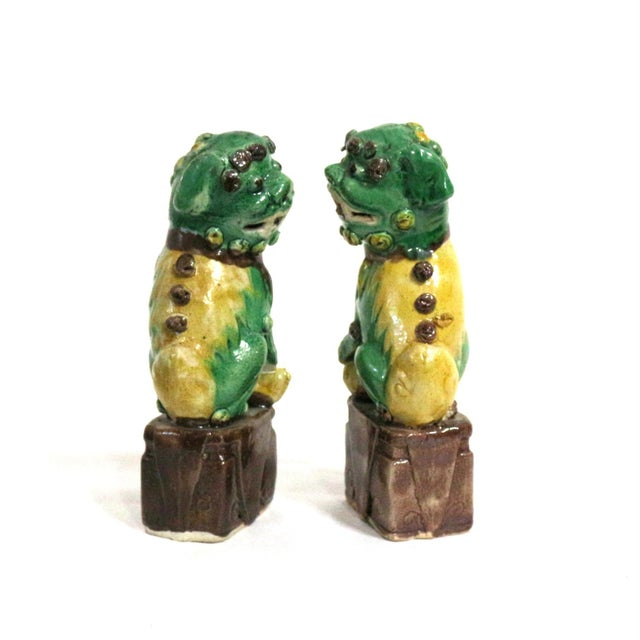 Image of Foo Dog Guardians Good Luck Dogs - A Pair