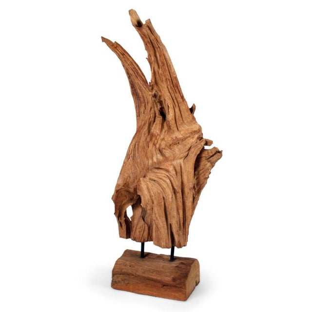 Wild Asian Teak Tree Root Sculpture - Image 2 of 8