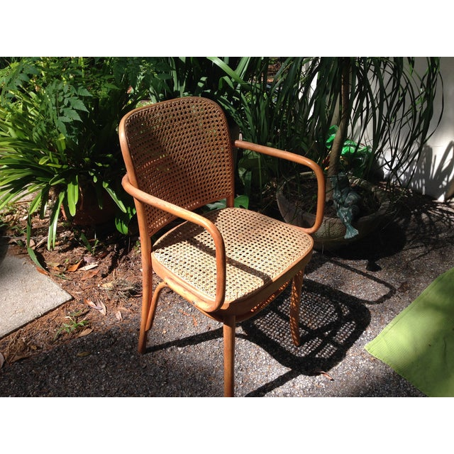 Josef Hoffman for Thonet Bentwood Arm Chairs - S/4 - Image 5 of 11