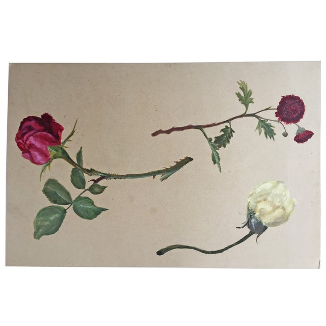 Antique Painting Botanical Study in Gouache - Image 2 of 4