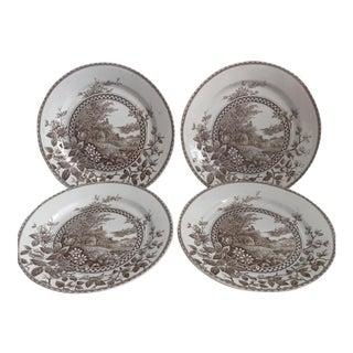Vintage Alton Transferware Plates - Set of 4
