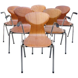 Obo Arm Chairs With Rounded Back - Set of 6